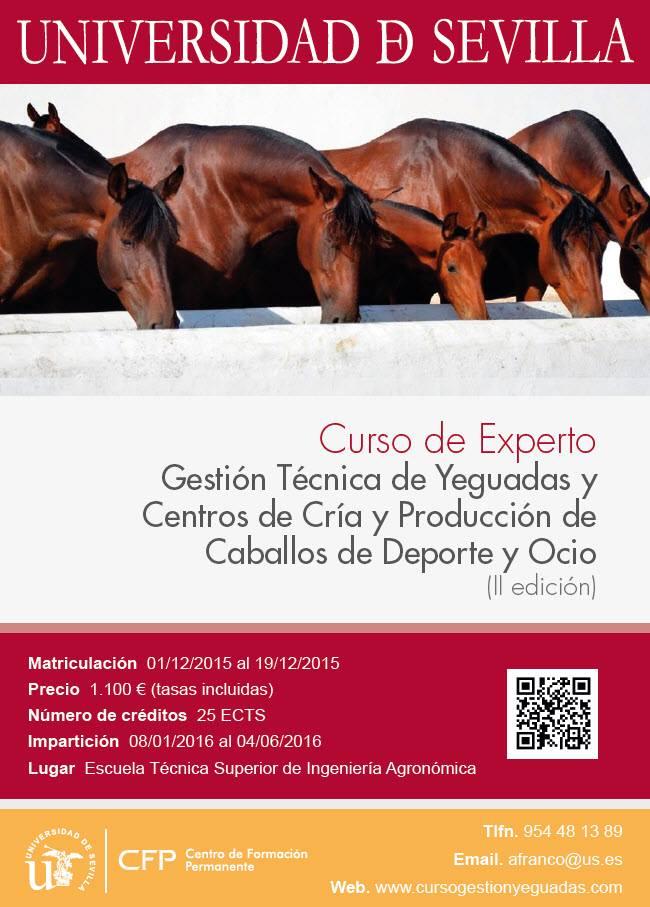 CFP Universidad de Sevilla