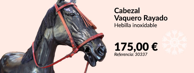 Cabezal de caballo